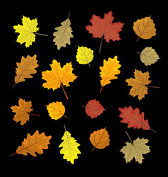 Set of colorful autumn leaves design elements vector