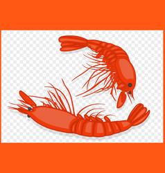 Shrimps isometric vector