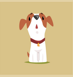 jack russell puppy character looking up cute vector image