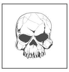 Hand drawn skull The symbol day of the dead vector image