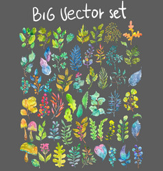 watercolor natural collection vector image vector image
