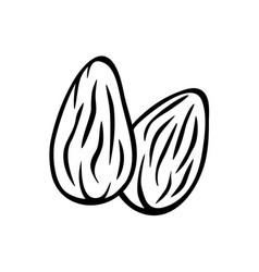 almonds nuts isolated icon two almond nuts vector image