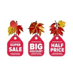 Autumn seasonal sale badges set vector image