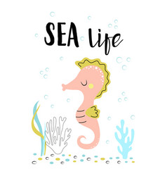 card with cute seahorse isolated on white sea life vector image