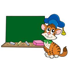 cat teacher with blackboard vector image