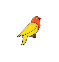 colorful bird icon design vector image