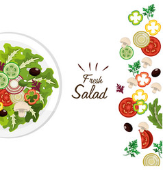 Delicious fresh vegetable salad vector