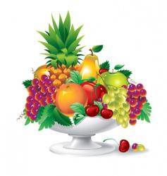 fruit in a vase vector image