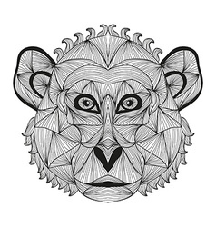 hand drawn decorative monkey vector image