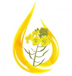 Mustard oil vector