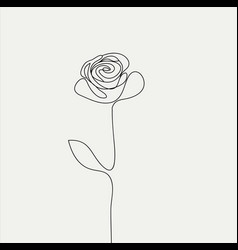 realistic elements outline rose vector image