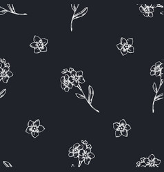 seamless pattern with hand drawn chalk forget me vector image