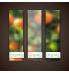 Set of banners with blurred background of orange vector image