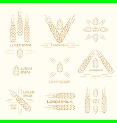 Spica logos vector
