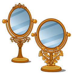 two mirrors with golden frame and petal ornament vector image