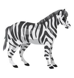 zebra icon cartoon style vector image