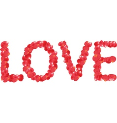 petals love vector image