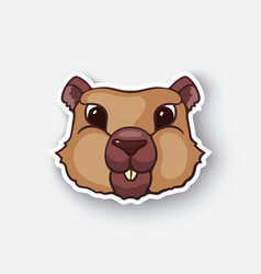 cartoon sticker groundhog head vector image