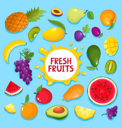 Colorful cartoon fresh fruit poster isolated on vector