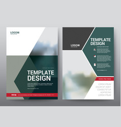 layout template for brochure poster leaflet vector image