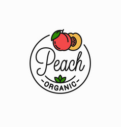 peach fruit logo linear peach slice background vector image