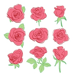Red beautiful roses - set - hand-drawing vector