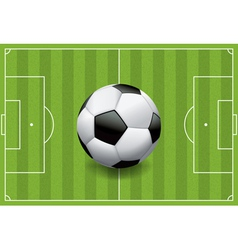 Soccer Field with Soccer Ball vector image