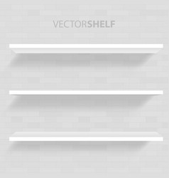 white shelf in gray background vector image vector image