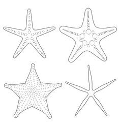 set of graphic black and white images of sea stars vector image vector image