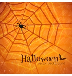 Felt pen drawing of spider web vector image vector image