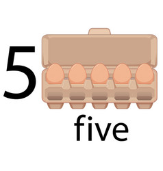 five egg in carton vector image