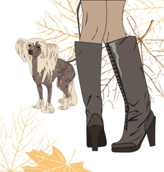 For a walk with the dog vector