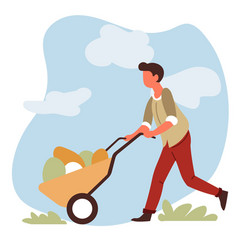 man farmer with vegetable harvest in wheelbarrow vector image
