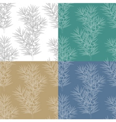 Set of seamless patterns with juniper branches vector image