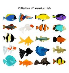 Aquarium fish set underwater diving fishes vector image vector image