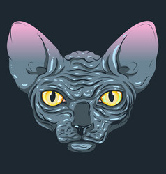 cat without fur sphinx with a dark gray vector image