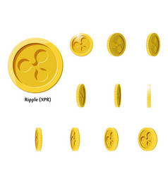 gold rotate ripple frames vector image vector image