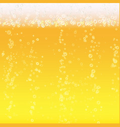 beer foam background light bright bubble and vector image vector image