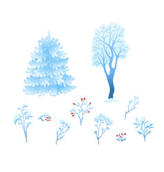 flat winter abstract plant floral snowcap vector image