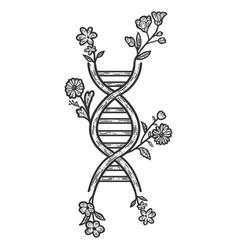 Genetic code floral sketch scratch board vector