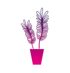 silhouette naturals plants inside pot with leaves vector image