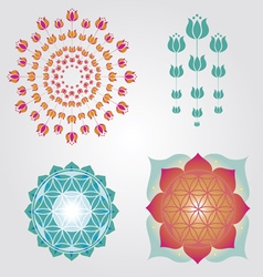 Floral icons designs vector image vector image