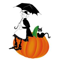 pumpkin old cat vector image vector image