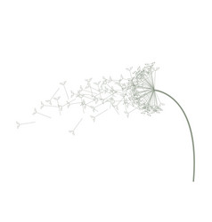 a light coloured green dandelion vector image