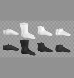 black and white realistic socks set vector image