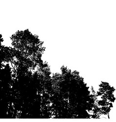 Black forest silhouette isolated on white vector
