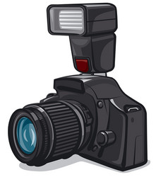 camera with flash vector image
