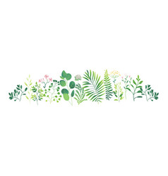 cartoon abstract green plant pattern vector image