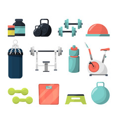 different equipment for gym weight gymnastic vector image
