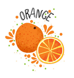 hand draw orange slice of vector image